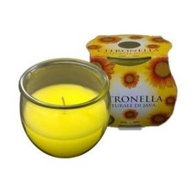 Price's Candles Citronella Jar In Cluster Pack 341447