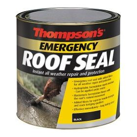 Thompson's Emergency Roof Seal 1L 560841